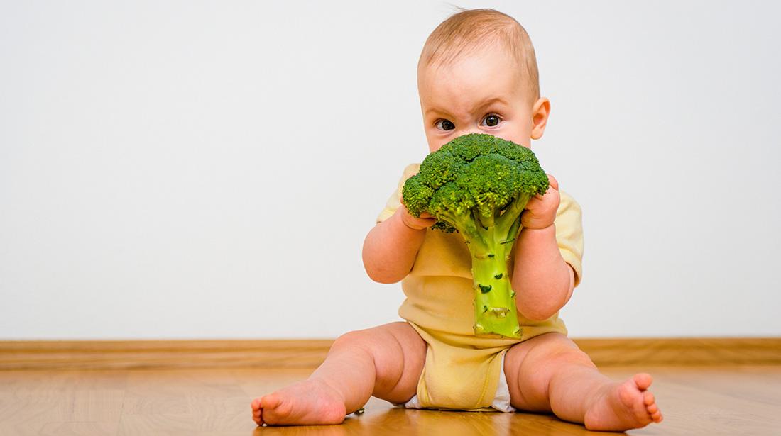 La alimentación de los niños en otoño e invierno