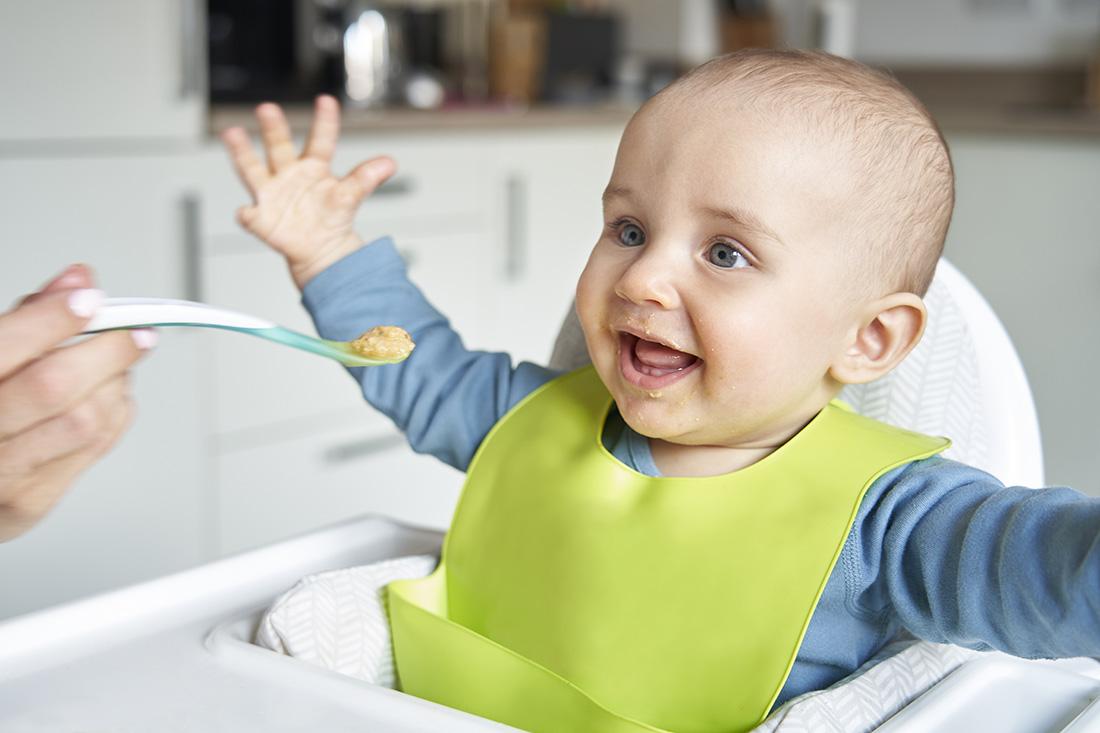 Crema fría de calabacín<span>Edad recomendada: +6 meses</span>